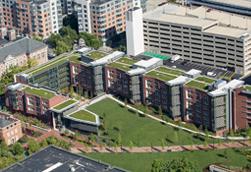 University of Pennsylvania <br/>New College House